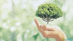 5 prostych sposobów jak być bardziej eko